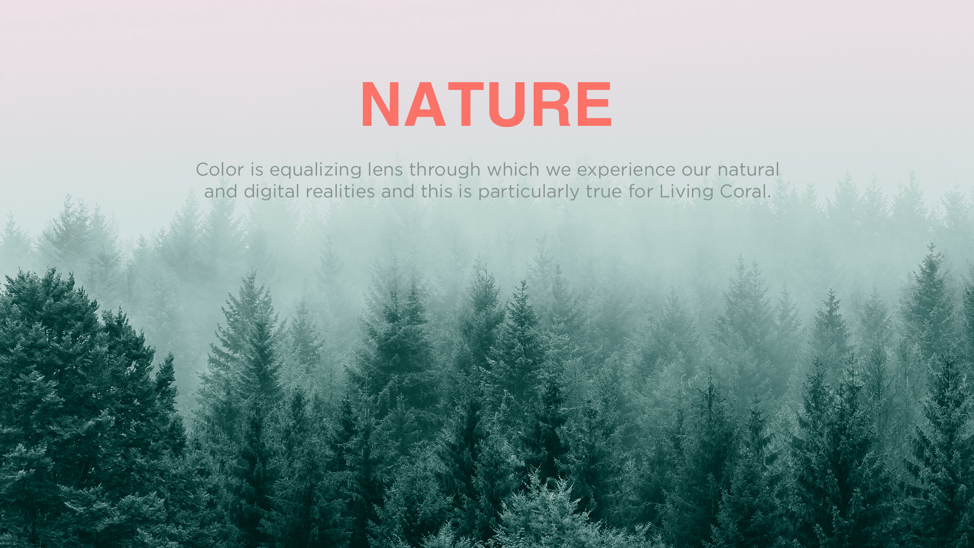 Image with text Nature and a background photo of a misty forest