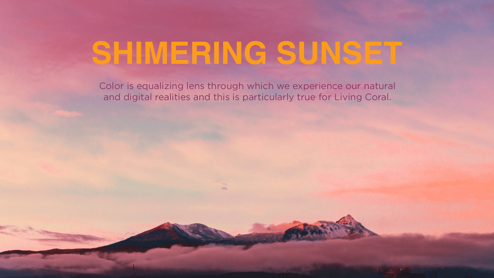 An image with shimmering sunset colors inspired by Coral Living