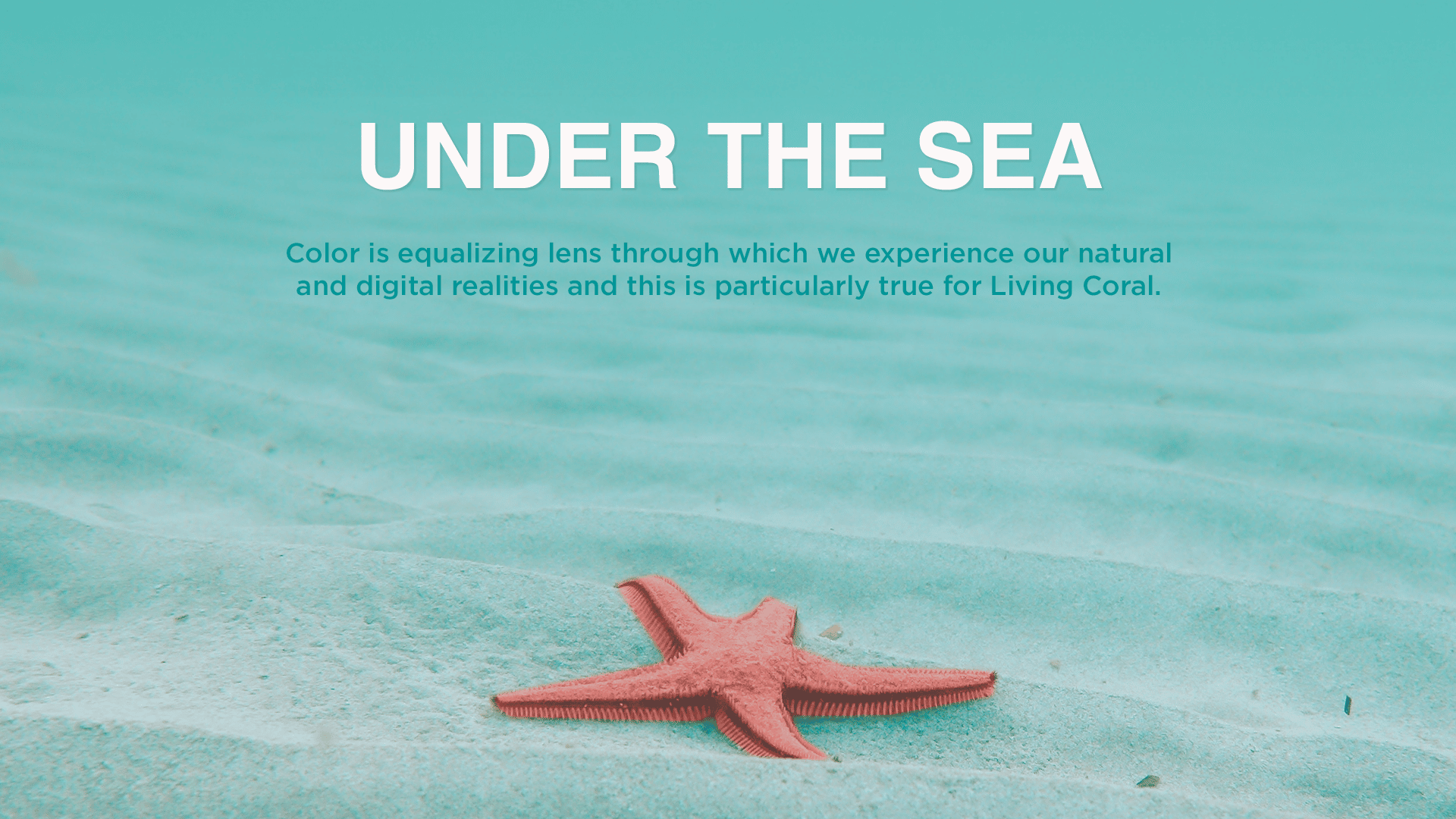An image of a sea star that on the sea bottom. Implementing living coral colors