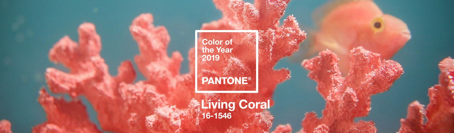 A picture of Color of the Year 2019 - Living Coral PANTONE