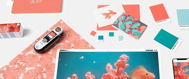 A picture of objects with living coral color on them